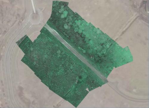 RGB Bild des Feldes